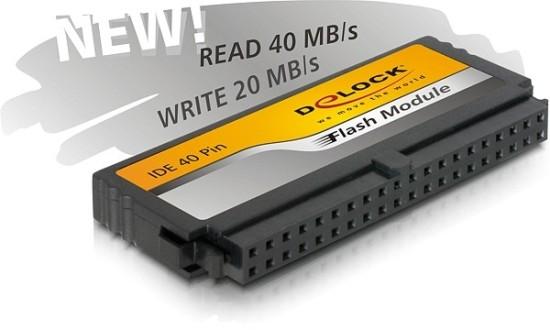Delock DOM 40Pin IDE 2048 MB V