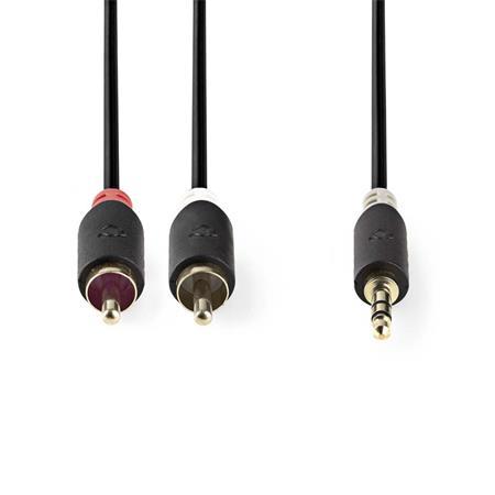 Nedis CABW22200AT100 - Stereofonní Audio Kabel   3,5mm Zástrčka - 2x RCA Zástrčka   10 m   Antracit